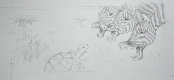 10a-Mijad-zebra
