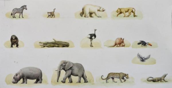 6b-Martine-Arche-animals